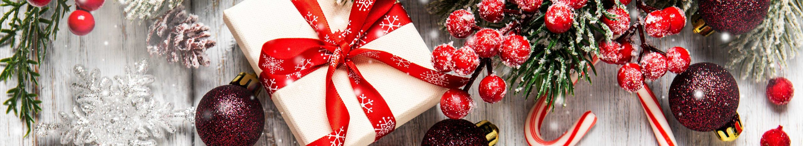 Holiday Collection Banner